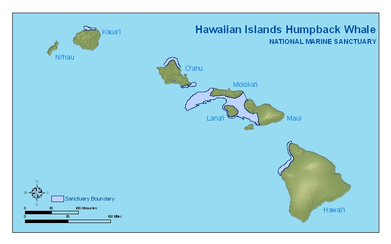 Hawaiian Islands Humpback Whale  Library  Maps Charts and GIS Data