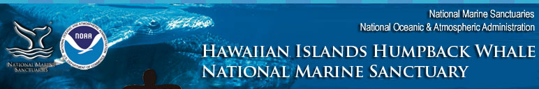 Hawaiian Cultural Heritage header graphic