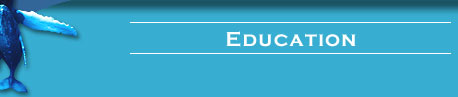 Education header bar graphic