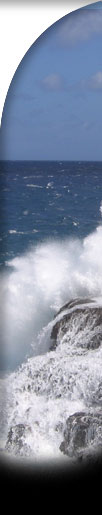 waves crashing right sidebar graphic