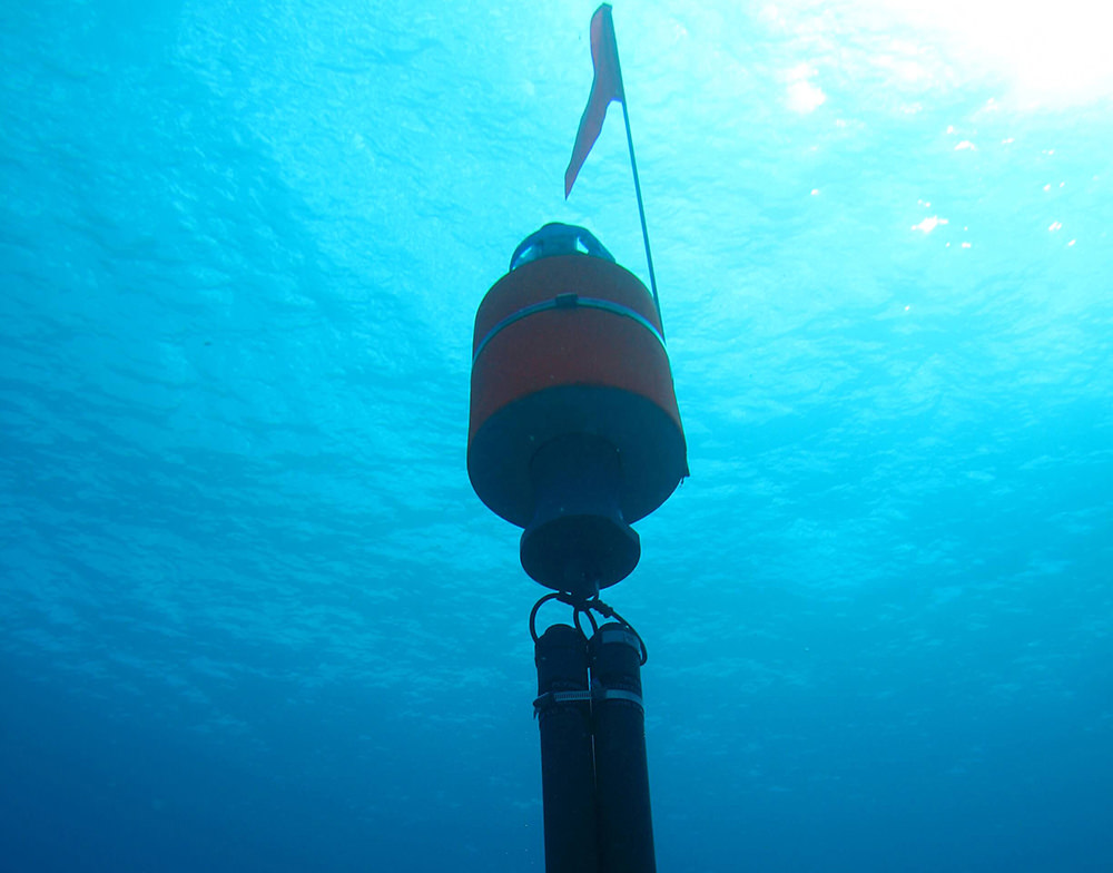 an image of a whale accoustic monitoring device underwater