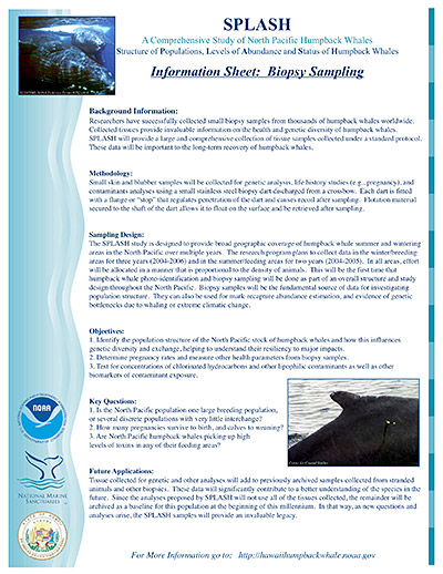 image of splash information sheet